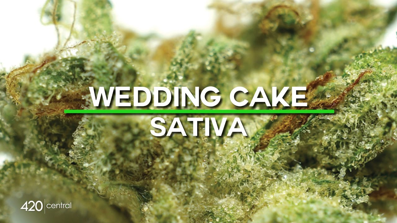 420 Central Strain Reviews Wedding Cake Youtube