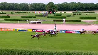 Vidéo de la course PMU PRIX DE ZURICH-DIELSDORF