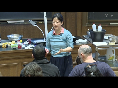 Elsa Yan (Yale Chemistry) – Chemistry of Food and Cooking