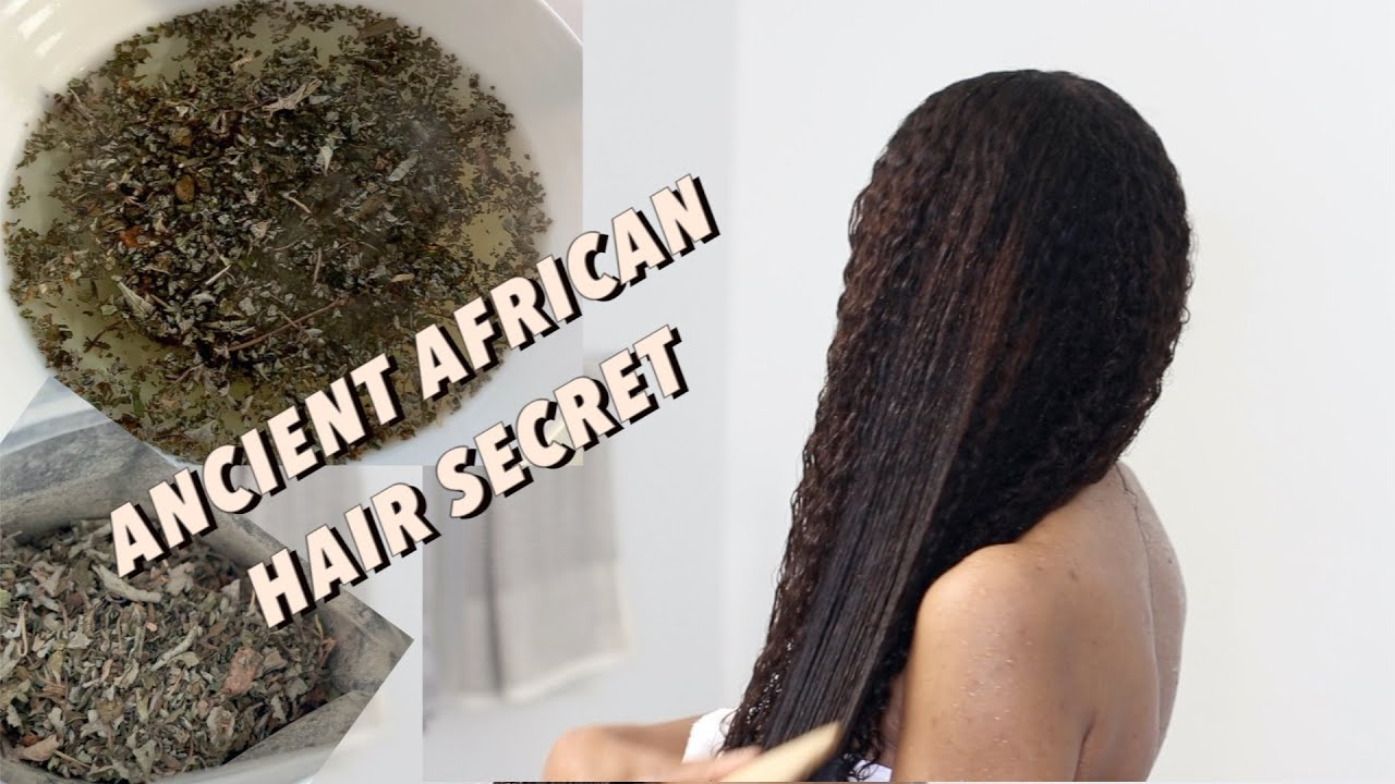 Ancient African Secret Ambunu (HERBS) on my Natural Hair