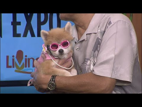 Celebrities and their pets at Hawaii Woman Expo