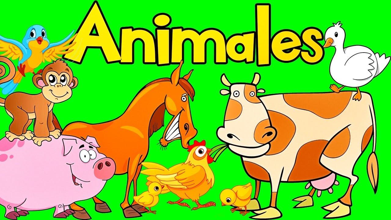 Sonidos De Animales Para Bebes Aprende Los Animales Videos Para Niños Lunacreciente Youtube