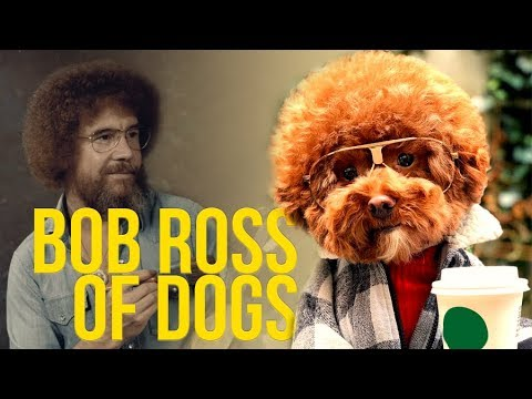 BOB ROSS OF DOGS | CUTE DOGS TOP VIDEOS 🎨🐕 | poochofnyc