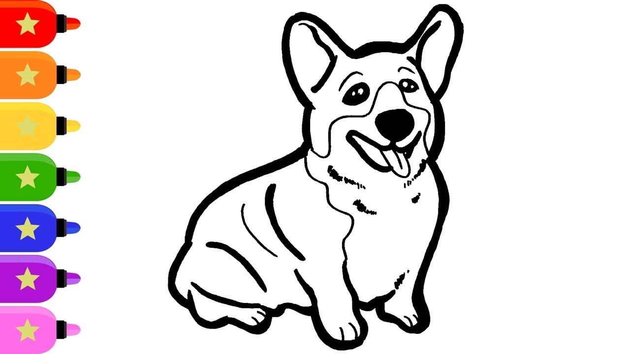 Welsh Corgi Drawing And Coloring For Kids Cara Menggambar Dan Mewarnai Anjing Welsh Corgi