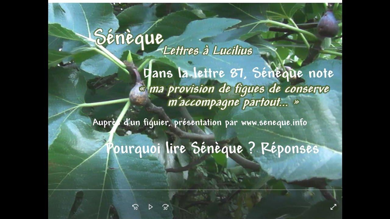 Sénèque Lettres à Lucilius Citations Présentation Par Seneque Info