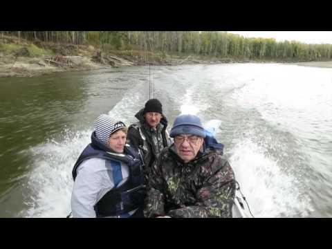 Уровень воды в реке Томь, гНовокузнецк МБУ Защита
