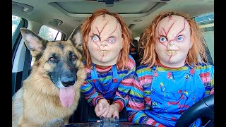 Chucky Surprises Dog With Dancing Car Ride Compilation