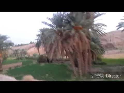 IRAN (TABAS)