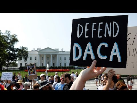 Politicians using DACA recipients to 'generate more #Resistance' – immigration lawyer