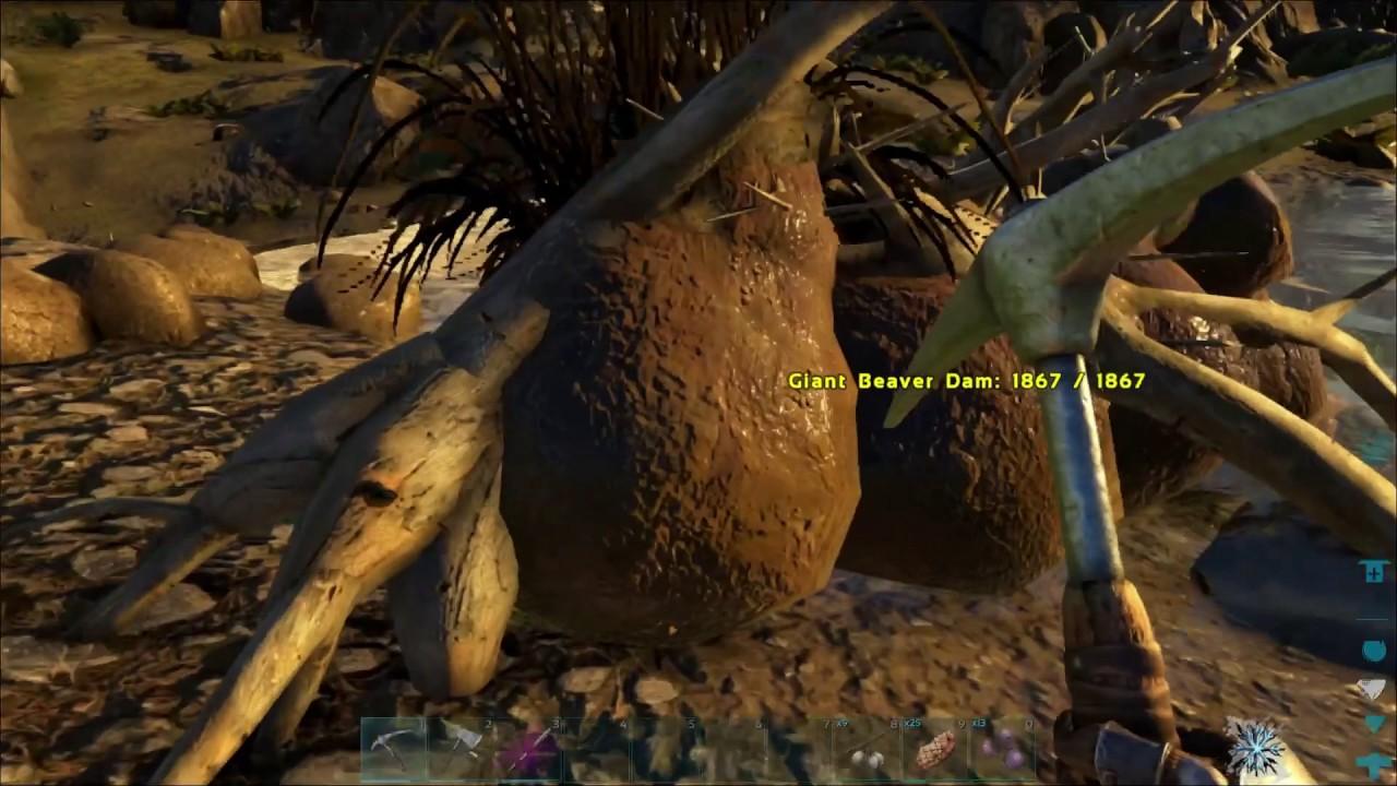 Beaver Moore (Valguero) - Official ARK: Survival Evolved Wiki   Ark Beaver Dam