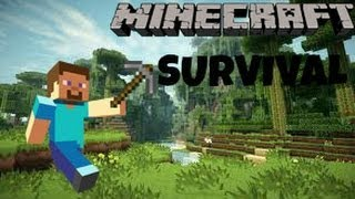 Minecraft - Survival Ep 3 (House Upgrade)