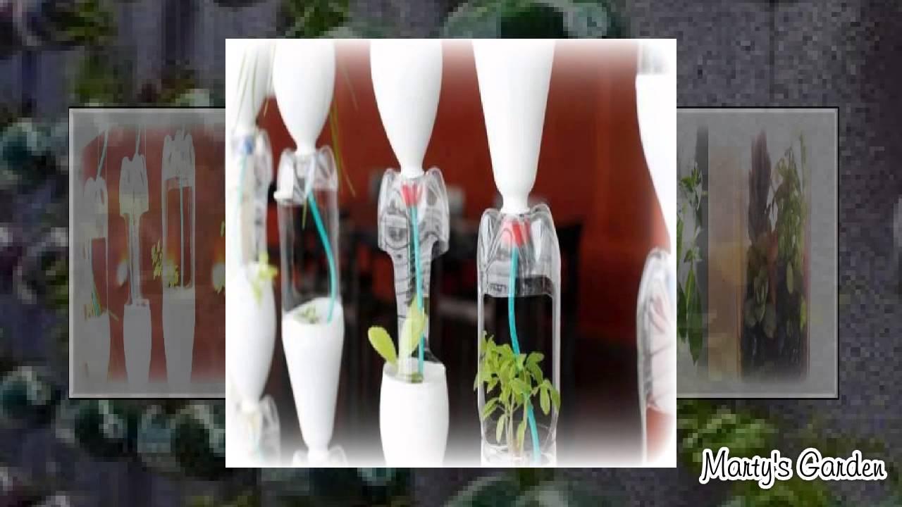10 Best Bottle Gardening Ideas - YouTube