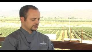 entrevista con roberto alcocer bccf ensenada gastronmica