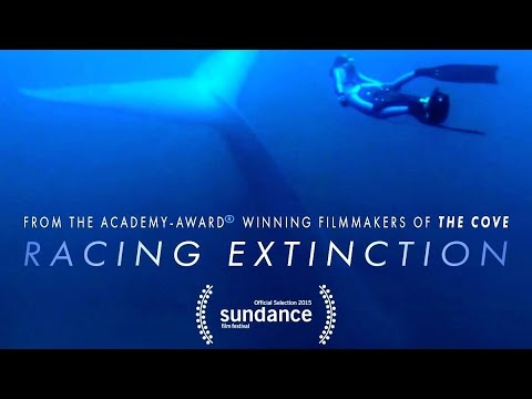 RACING EXTINCTION  Mass Extinction Event Doc with Louie Psihoyos