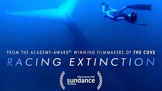 RACING EXTINCTION - Mass Extinction Event Doc with Louie Psihoyos