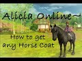 Alicia Online - How To: Get Any Horse Coat Color