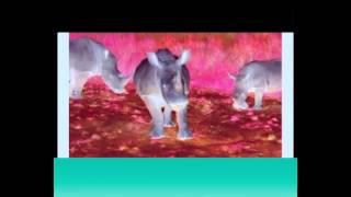 Love Rhino by Sunny Levine