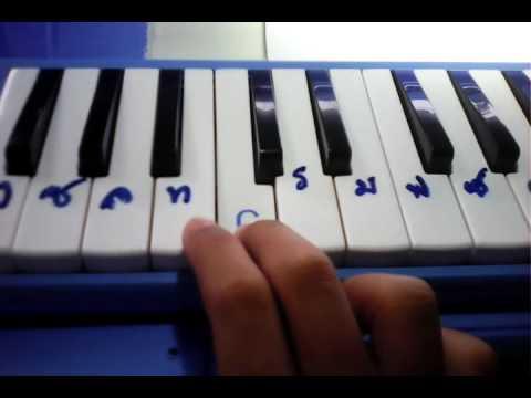 เมโลเดียนเพลง สรรเสริญพระบารมี (ฝึกเป่า)