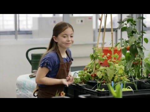 Zwarte Tulp seizoen 1   Waar gaat de serie Zwarte Tulp over?