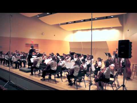 Community Music School, Webster University, String Orchestra 2014