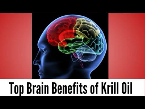 Top Brain Benefit Of Krill Oil