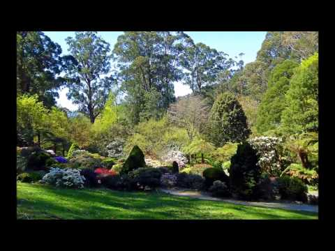 Gardens & Parks near Melbourne