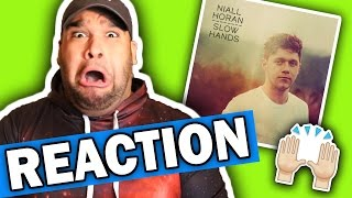Niall Horan - Slow Hands [REACTION] Mp3