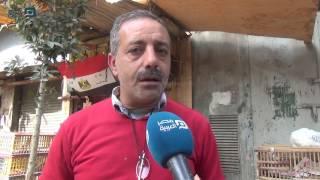 فيديو| صاحب محل دواجن.. الأقفاص بلا فراخ والسعر طاير