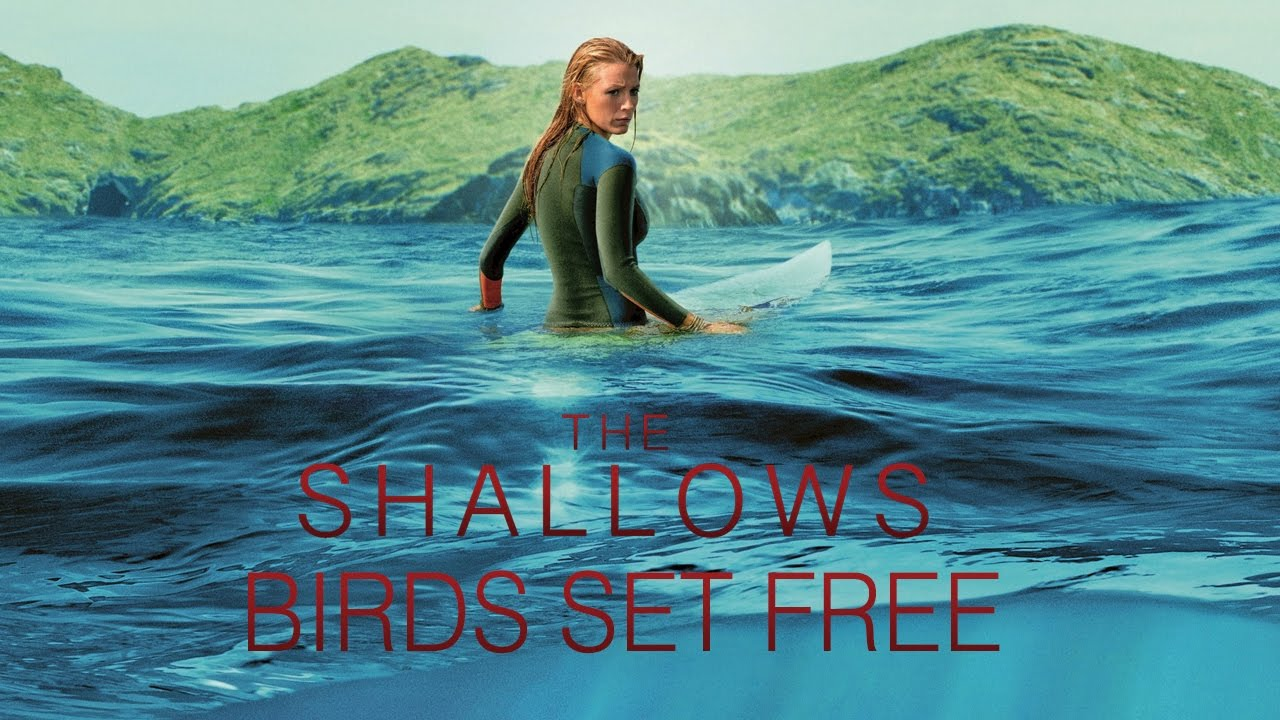 the shallows bird set free mp3 download