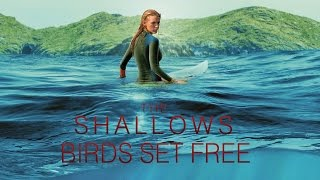 birds-set-free---sia-the-shallows-movie-ost-download