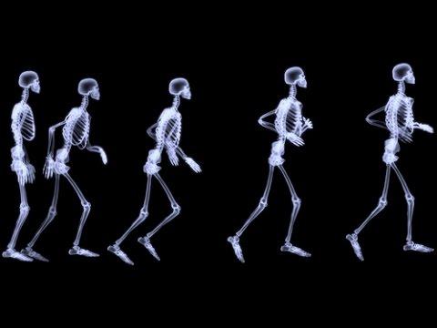 Canción de los huesos - YouTube