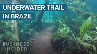 Heavy Rain Turned This Hiking Trail Into An Underwater Paradise