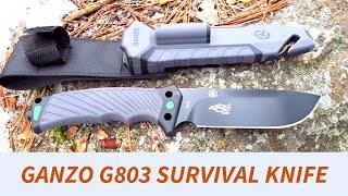 Ganzo G803 Survival Knife - Solid Budget Option?