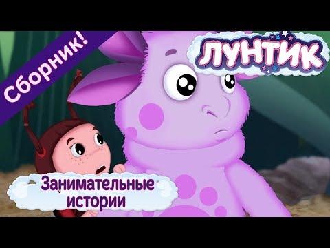 Занимательные истории 🤗 Лунтик 🤗 Сборник мультфильмов