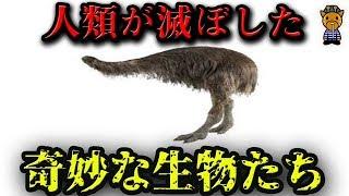 人類が絶滅させた奇妙な動物、身近な動物 7選