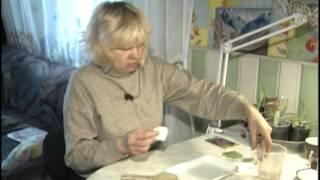 видео СРОКИ ПОСЕВА ПОЗДНЕЙ КАПУСТЫ НА РАССАДУ - Выращивание рассады капусты разных видов