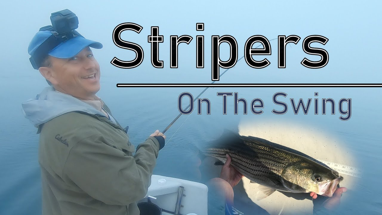 Using the Minn Kota to Catch Stripers on the Swing