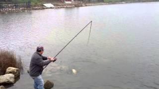 olta kıran balık inanılmaz