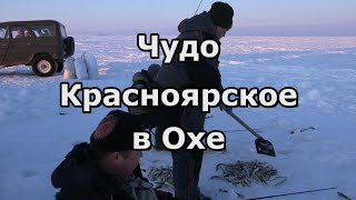 Чудо Красноярское в Охе что на севере Сахалина