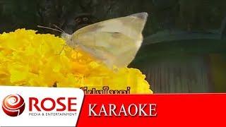 ชมไพรในฝัน - ไพจิตร อักษรณรงค์ (KARAOKE)