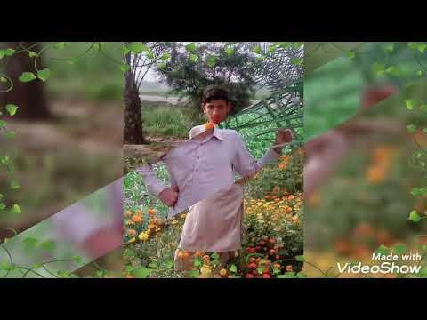nika-jiya-dhola-sona-jiya-dhola-song-2019-videos