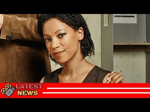 Grey's Anatomy Nina Sosanya Biography Age Movies, TV s, Marcella, Shetland