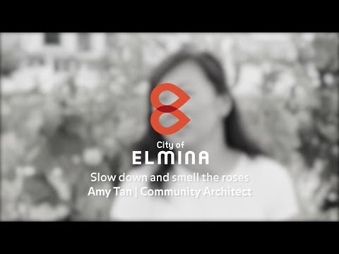 The Architects of Elmina – Amy Tan (Community Architect) 1