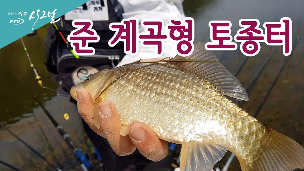 [하이라이트] FTV 시그널 - 준 계곡형 토종터