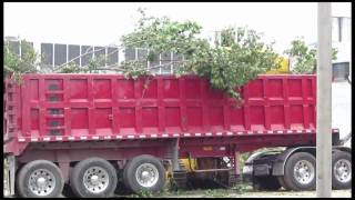 Komatsu D75S track loader loading brush