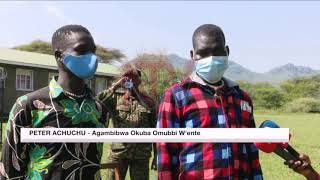 OKUMALAWO OBUBBI BW'ENTE: Waliwo eyeewaddeyo eri aba UPDF