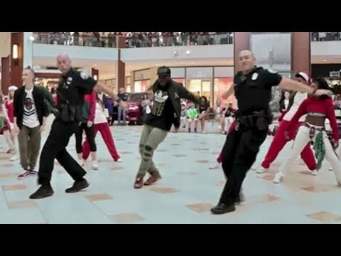 Hilarious video: police