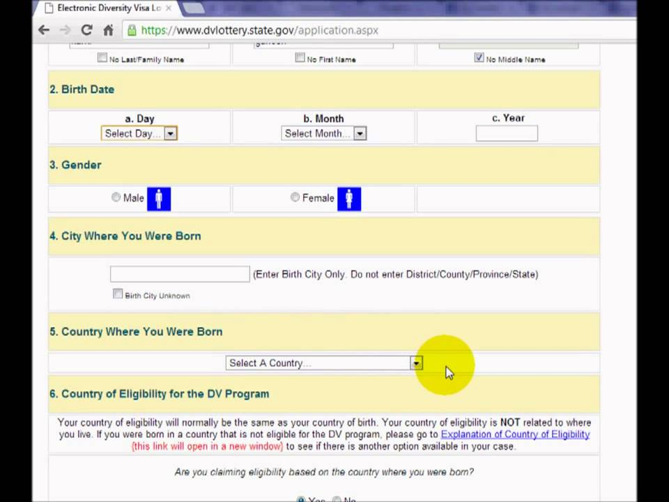 American Green Card Lottery Form Infoupdate
