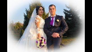 Роскошная Свадьба Аслана и Фирузы Turkish Wedding Almaty-Жанашар