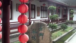 Longjing Tea Farms (Vlog #90)